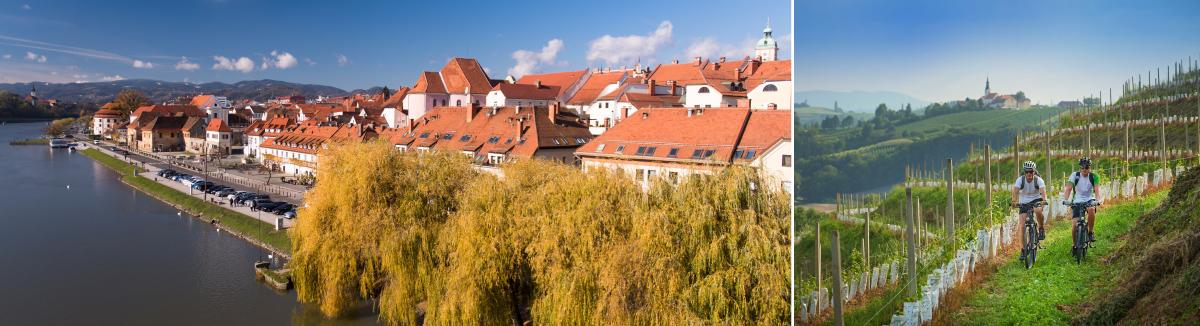 Štajerske vinske kleti