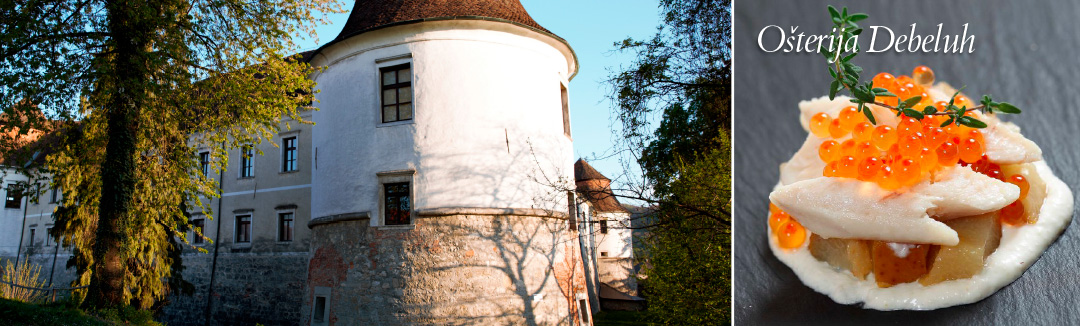 Čatež e Posavje, cittadine pittoresche e castelli medievali